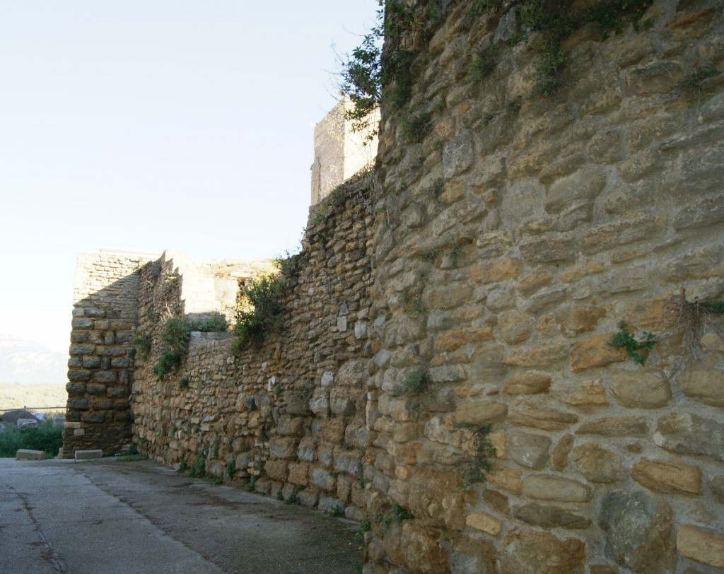 Sector nord del castell d'Àger